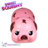 Sweet Squishy Figuurtje Roze Varkentje 10 cm